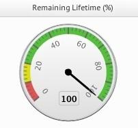 flash-remaining-lifetime